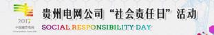 """贵州电网公司2017年""""社会责任日""""活动"""