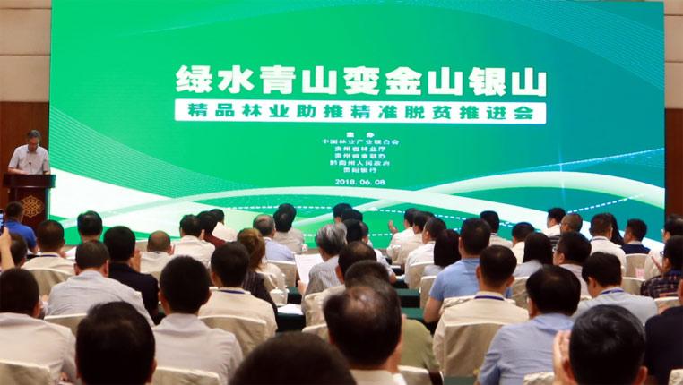 贵州:精品林业+绿色金融助推精准脱贫