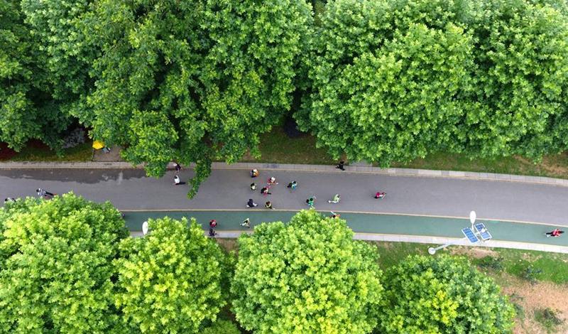 航拍:贵州启动全国节能宣传周活动 倡导节能低碳理念